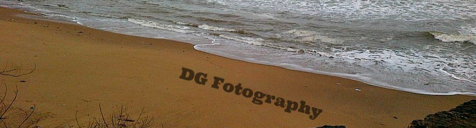 Dhruv Gaur's Webblog